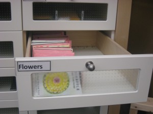 flower seed packet drawer